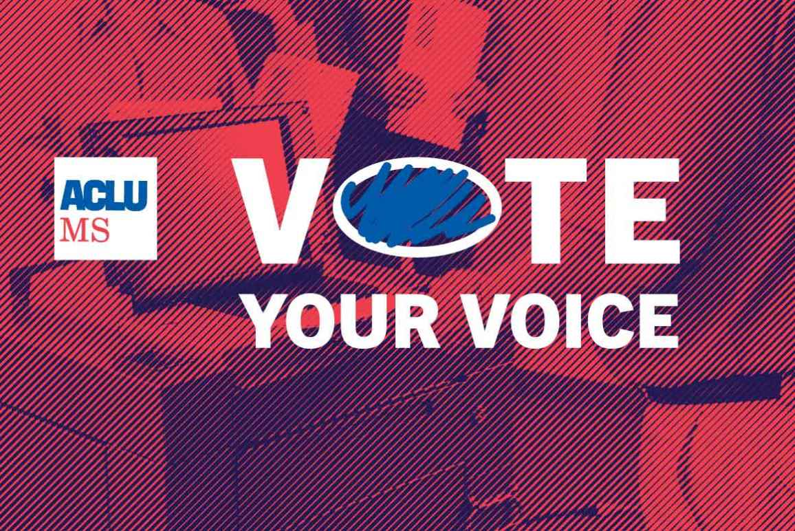 Vote Your Voice header