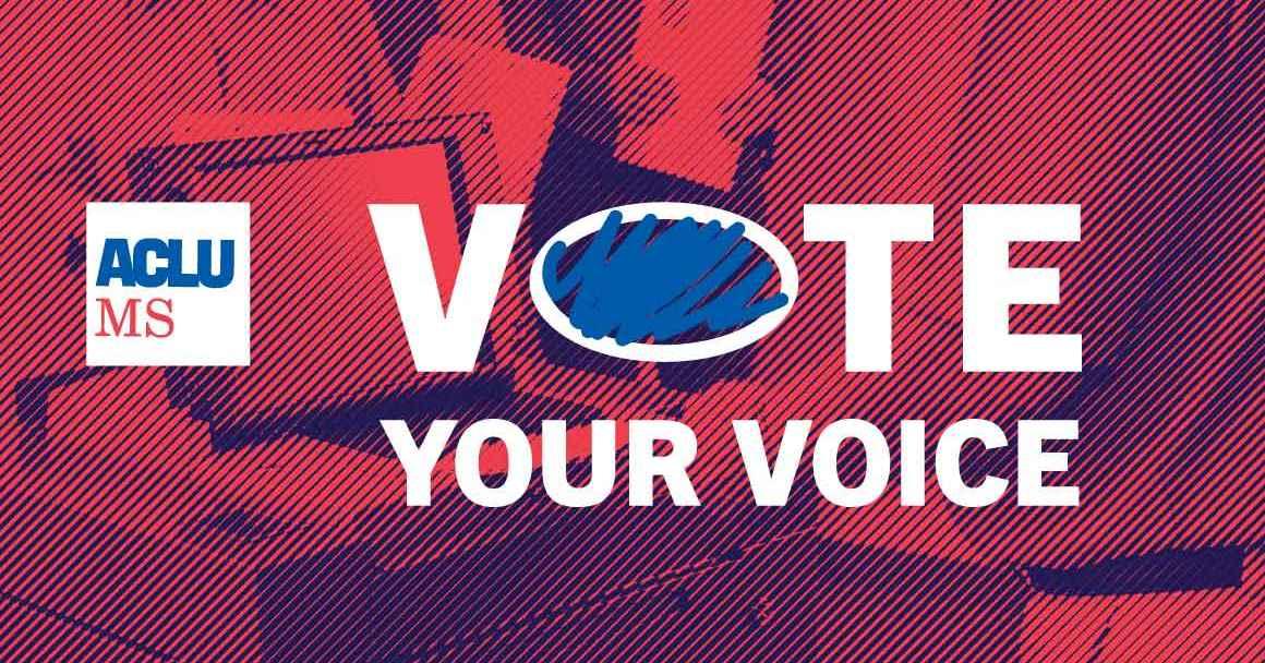 Vote Your Voice header